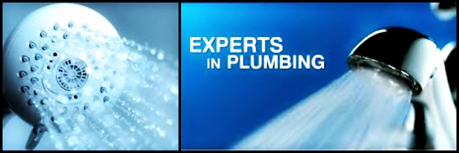 FULLY QUAILIFIED PLUMBER & GAS FITTER
